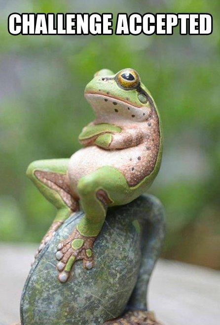 Frog-MEME