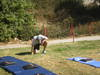 Fitnesstest_017